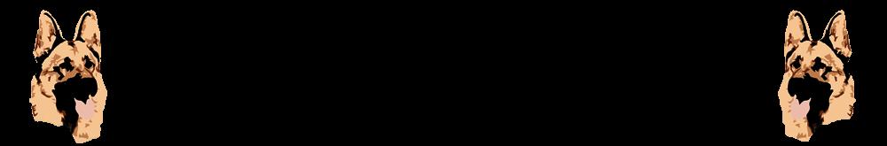 SV OG Thedinghausen